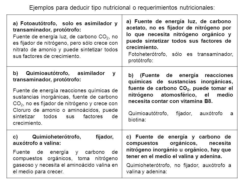 a) Fotoautótrofo, solo es asimilador y transaminador, protótrofo: Ejemplos para deducir tipo nutricional o requerimientos nutricionales: Fuente de ene