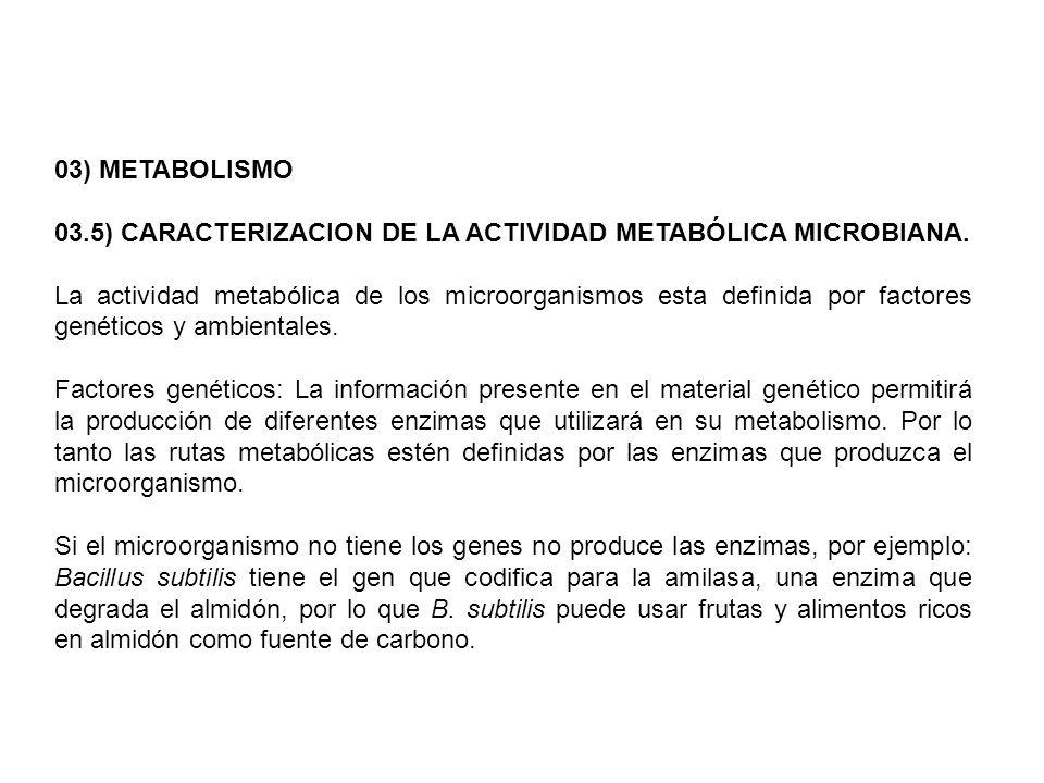 03) METABOLISMO 03.5) CARACTERIZACION DE LA ACTIVIDAD METABÓLICA MICROBIANA. La actividad metabólica de los microorganismos esta definida por factores