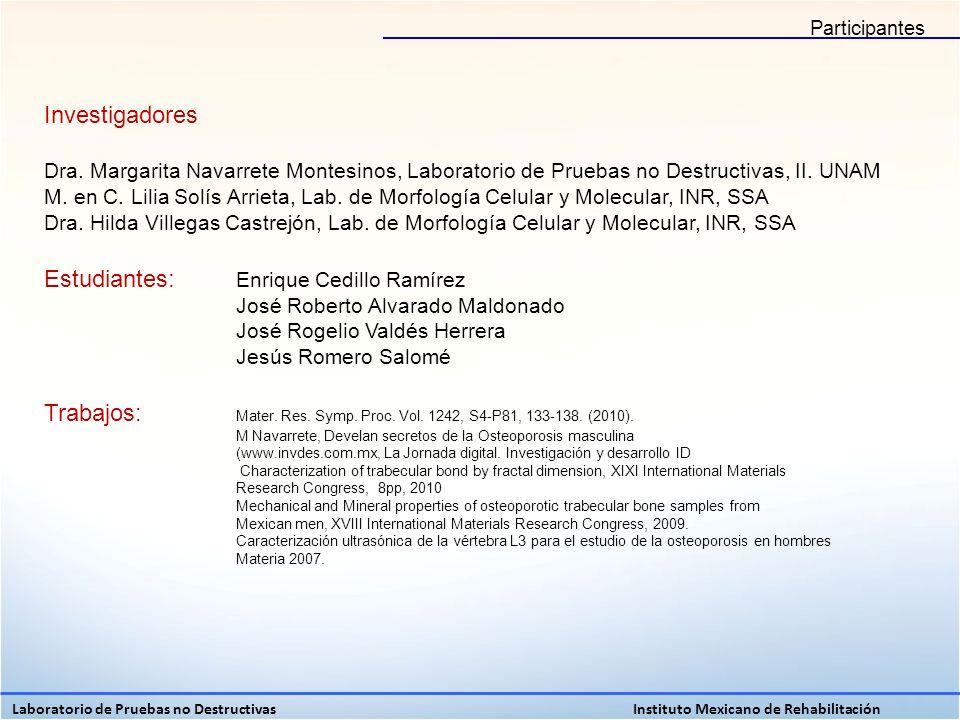 Investigadores Dra. Margarita Navarrete Montesinos, Laboratorio de Pruebas no Destructivas, II. UNAM M. en C. Lilia Solís Arrieta, Lab. de Morfología