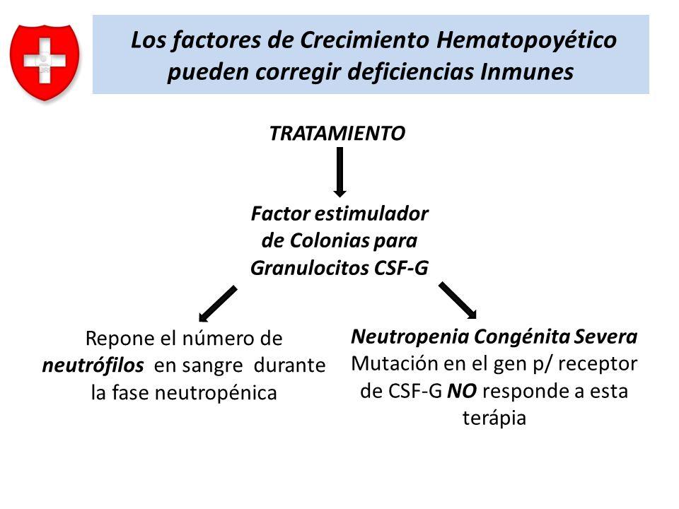 Los factores de Crecimiento Hematopoyético pueden corregir deficiencias Inmunes TRATAMIENTO Factor estimulador de Colonias para Granulocitos CSF-G Rep