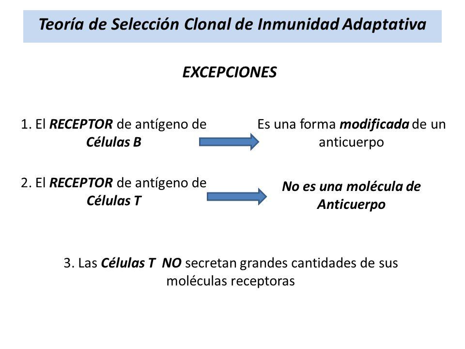 Teoría de Selección Clonal de Inmunidad Adaptativa EXCEPCIONES 1. El RECEPTOR de antígeno de Células B Es una forma modificada de un anticuerpo 2. El