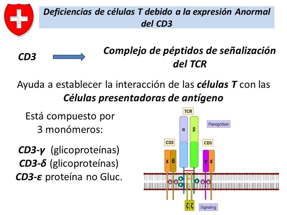 Deficiencias de células T debido a la expresión Anormal del CD3 CD3 Ayuda a establecer la interacción de las células T con las Células presentadoras d