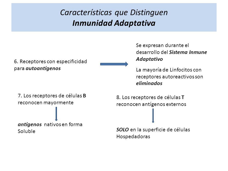 Características que Distinguen Inmunidad Adaptativa 6. Receptores con especificidad para autoantígenos Se expresan durante el desarrollo del Sistema I