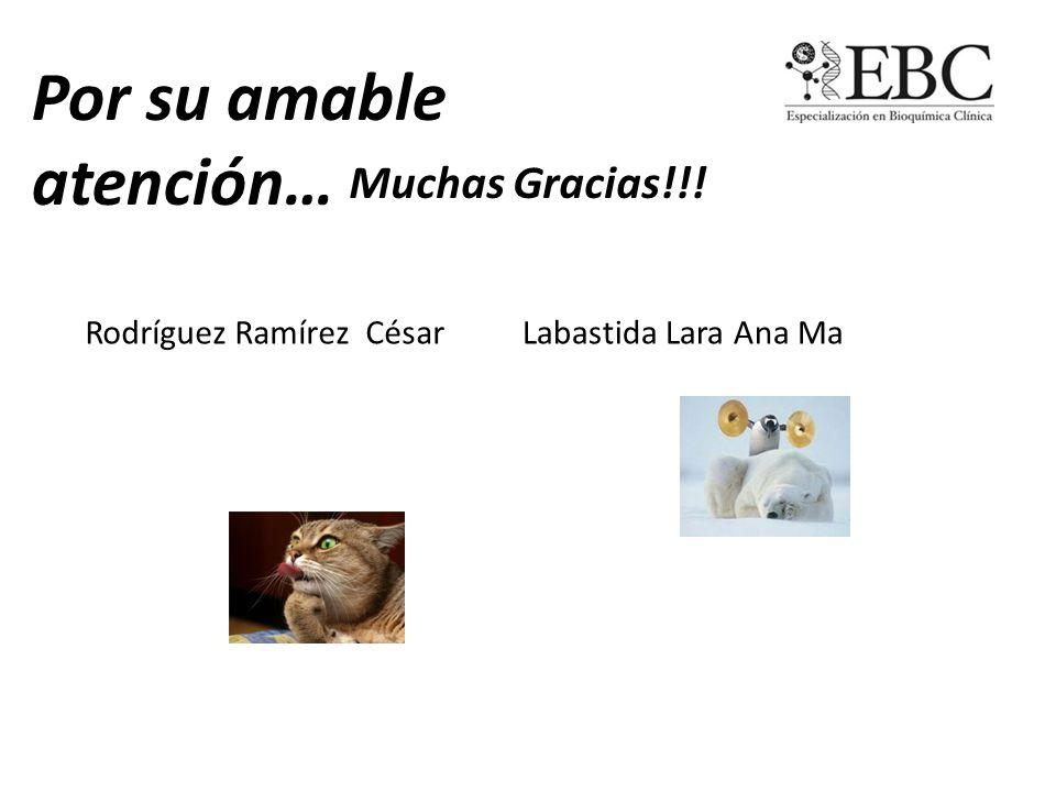 Por su amable atención… Muchas Gracias!!! Rodríguez Ramírez CésarLabastida Lara Ana Ma