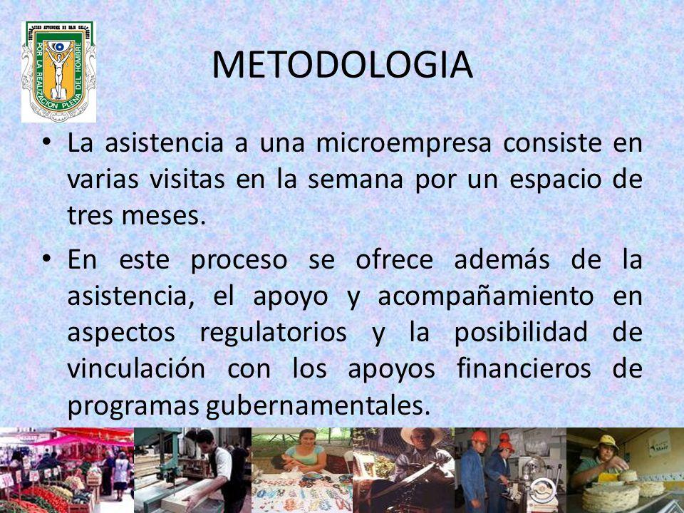Los PSS reciben una capacitación sobre el Marco Económico Actual del País, llenado de instrumentos de asistencia y llenado de formatos antes las autoridades fiscales, así como un taller sobre el manejo del Software (SAM) Sistema de Asistencia Microempresarial.