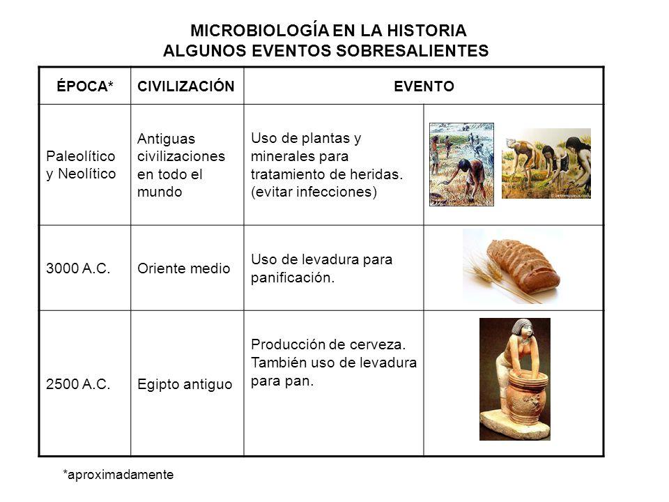 MICROBIOLOGÍA EN LA HISTORIA ALGUNOS EVENTOS SOBRESALIENTES ÉPOCA*CIVILIZACIÓNEVENTO Paleolítico y Neolítico Antiguas civilizaciones en todo el mundo