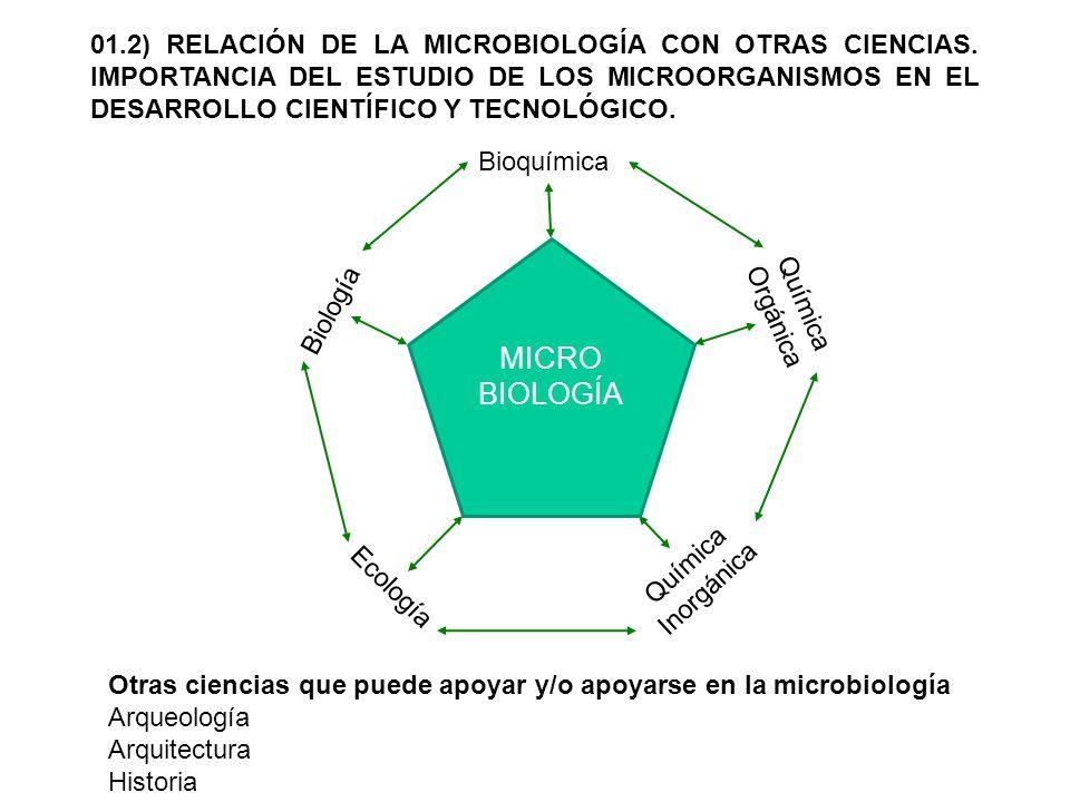 01.2) RELACIÓN DE LA MICROBIOLOGÍA CON OTRAS CIENCIAS. IMPORTANCIA DEL ESTUDIO DE LOS MICROORGANISMOS EN EL DESARROLLO CIENTÍFICO Y TECNOLÓGICO. Otras