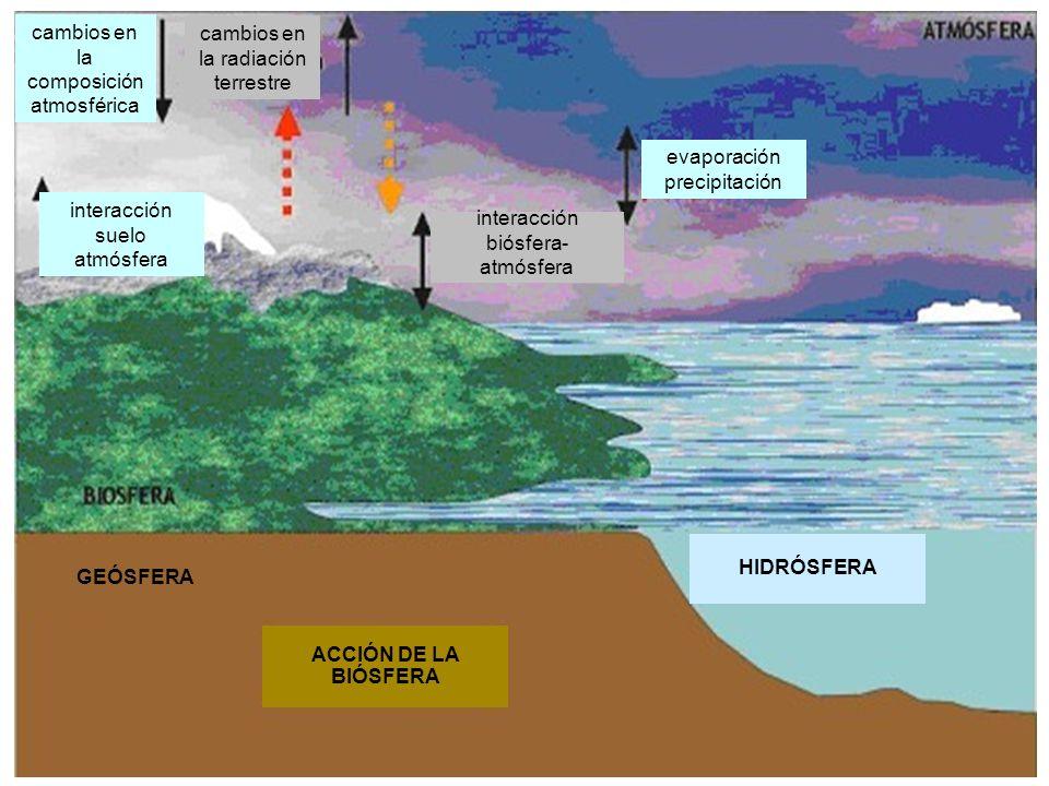 cambios en la composición atmosférica cambios en la radiación terrestre interacción suelo atmósfera interacción biósfera- atmósfera evaporación precip