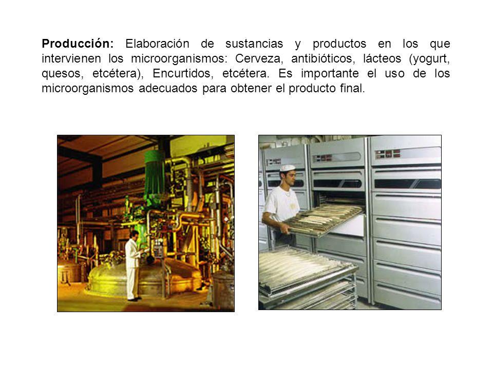 Producción: Elaboración de sustancias y productos en los que intervienen los microorganismos: Cerveza, antibióticos, lácteos (yogurt, quesos, etcétera