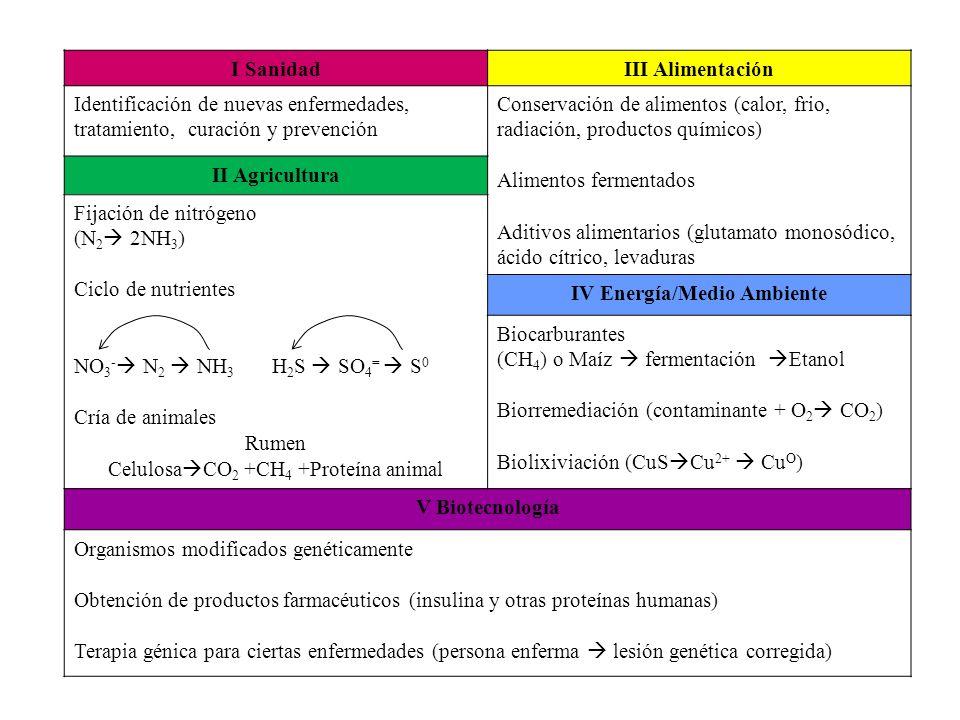 I SanidadIII Alimentación Identificación de nuevas enfermedades, tratamiento, curación y prevención Conservación de alimentos (calor, frio, radiación,
