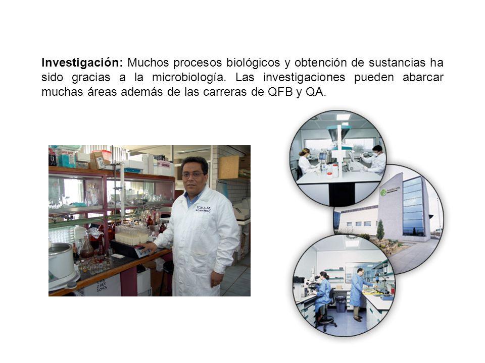 Investigación: Muchos procesos biológicos y obtención de sustancias ha sido gracias a la microbiología. Las investigaciones pueden abarcar muchas área