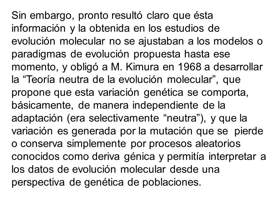 Sin embargo, pronto resultó claro que ésta información y la obtenida en los estudios de evolución molecular no se ajustaban a los modelos o paradigmas de evolución propuesta hasta ese momento, y obligó a M.