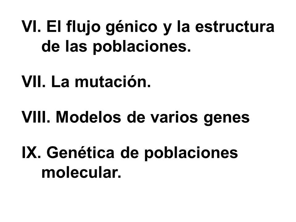 VI.El flujo génico y la estructura de las poblaciones.
