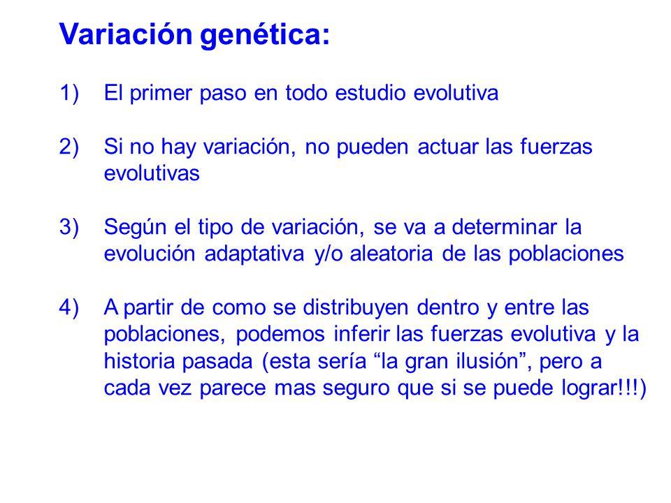 Variación genética: 1)El primer paso en todo estudio evolutiva 2)Si no hay variación, no pueden actuar las fuerzas evolutivas 3)Según el tipo de variación, se va a determinar la evolución adaptativa y/o aleatoria de las poblaciones 4)A partir de como se distribuyen dentro y entre las poblaciones, podemos inferir las fuerzas evolutiva y la historia pasada (esta sería la gran ilusión, pero a cada vez parece mas seguro que si se puede lograr!!!)