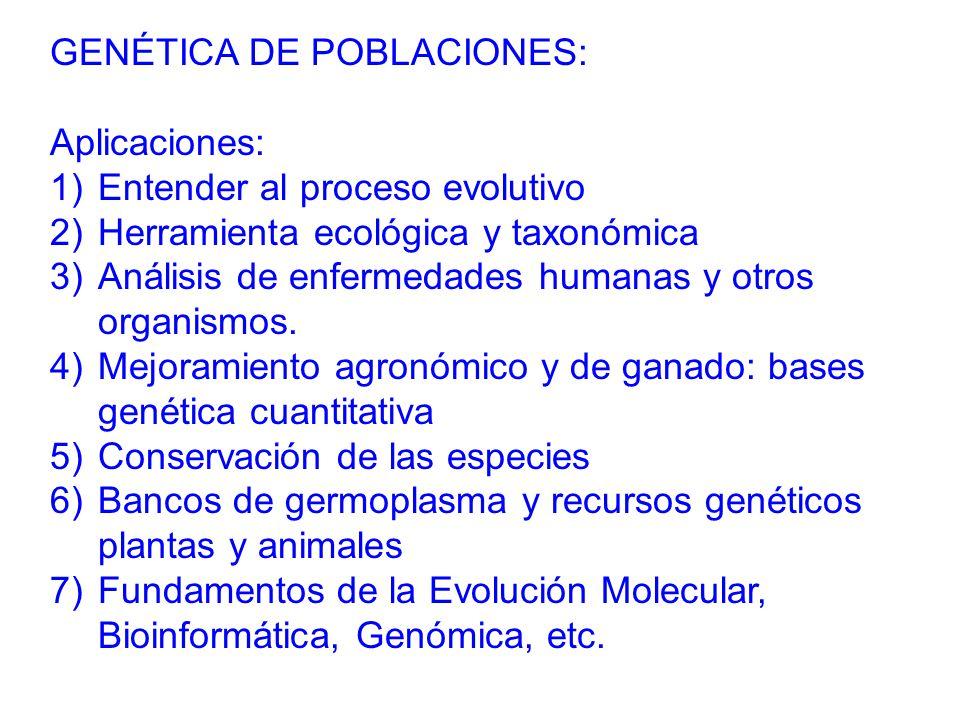 GENÉTICA DE POBLACIONES: Aplicaciones: 1)Entender al proceso evolutivo 2)Herramienta ecológica y taxonómica 3)Análisis de enfermedades humanas y otros organismos.