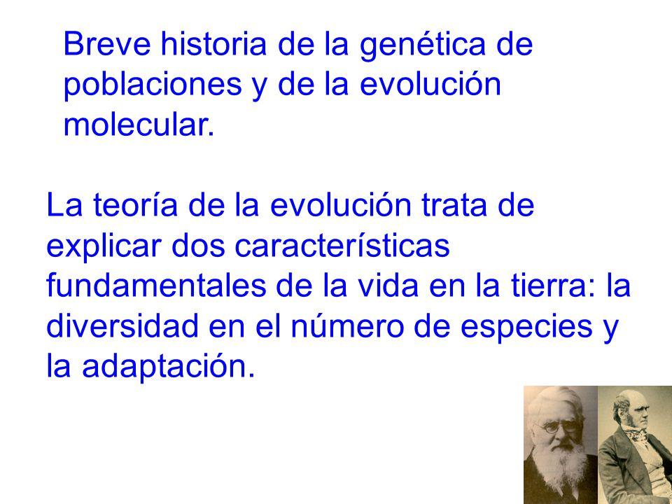 Breve historia de la genética de poblaciones y de la evolución molecular.