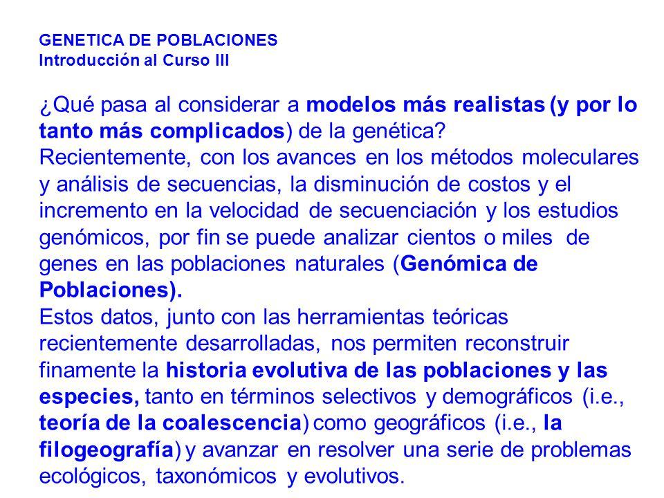 GENETICA DE POBLACIONES Introducción al Curso III ¿Qué pasa al considerar a modelos más realistas (y por lo tanto más complicados) de la genética.