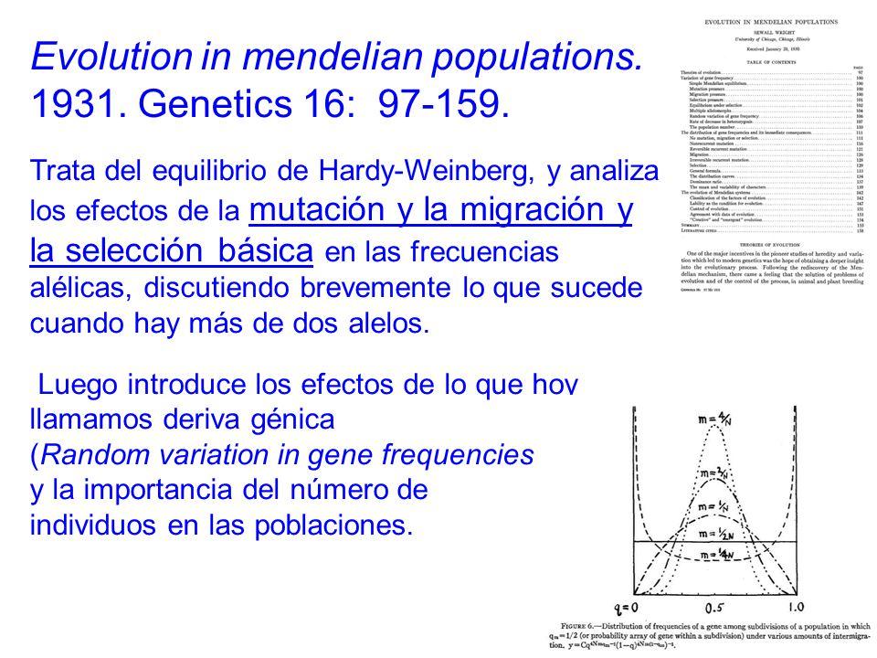 Evolution in mendelian populations.1931. Genetics 16: 97-159.