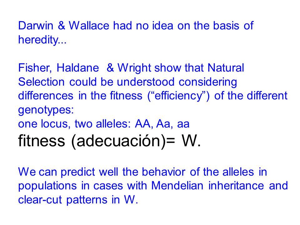 Darwin & Wallace had no idea on the basis of heredity...