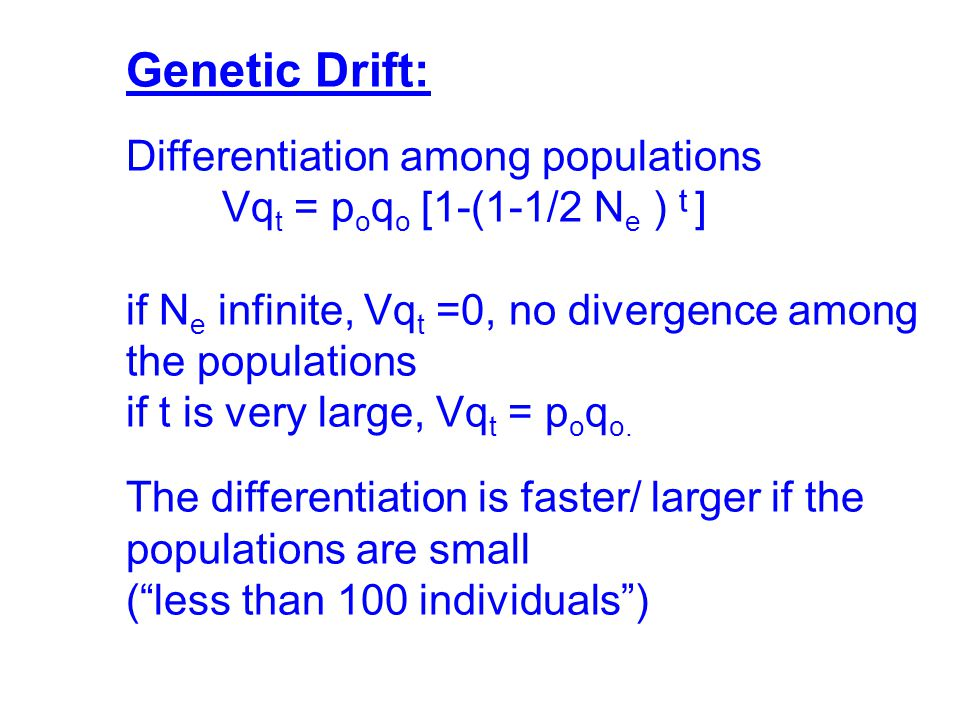 Genetic Drift: Differentiation among populations Vq t = p o q o [1-(1-1/2 N e ) t ] if N e infinite, Vq t =0, no divergence among the populations if t is very large, Vq t = p o q o.