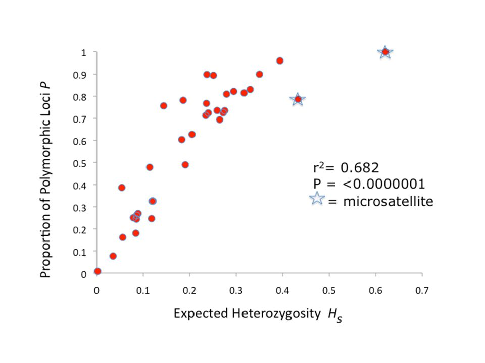 Expected Heterozygosity H s Proportion of Polymorphic Loci P r 2 = 0.682 P = <0.0000001 = microsatellite