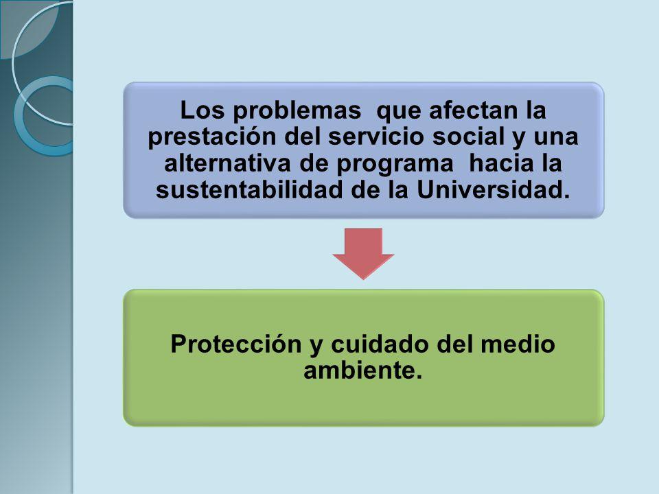 Los problemas que afectan la prestación del servicio social y una alternativa de programa hacia la sustentabilidad de la Universidad. Protección y cui