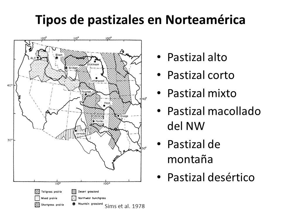 Hipótesis de perturbación intermedia Niveles moderados de perturbación incrementan la diversidad regional Whicker y Detling 1988