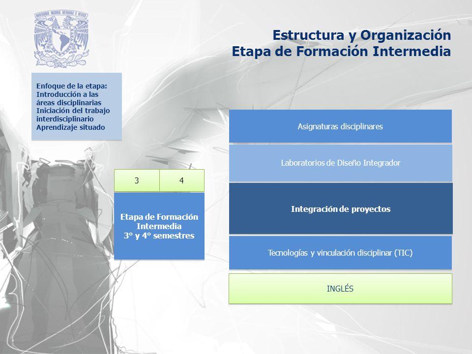 Integración de proyectos Laboratorios de Diseño Integrador Asignaturas disciplinares 3 3 4 4 Etapa de Formación Intermedia 3° y 4° semestres Etapa de