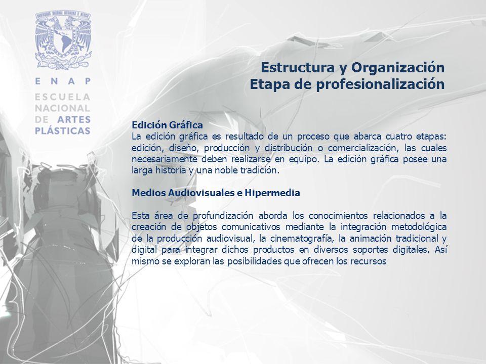 Edición Gráfica La edición gráfica es resultado de un proceso que abarca cuatro etapas: edición, diseño, producción y distribución o comercialización,