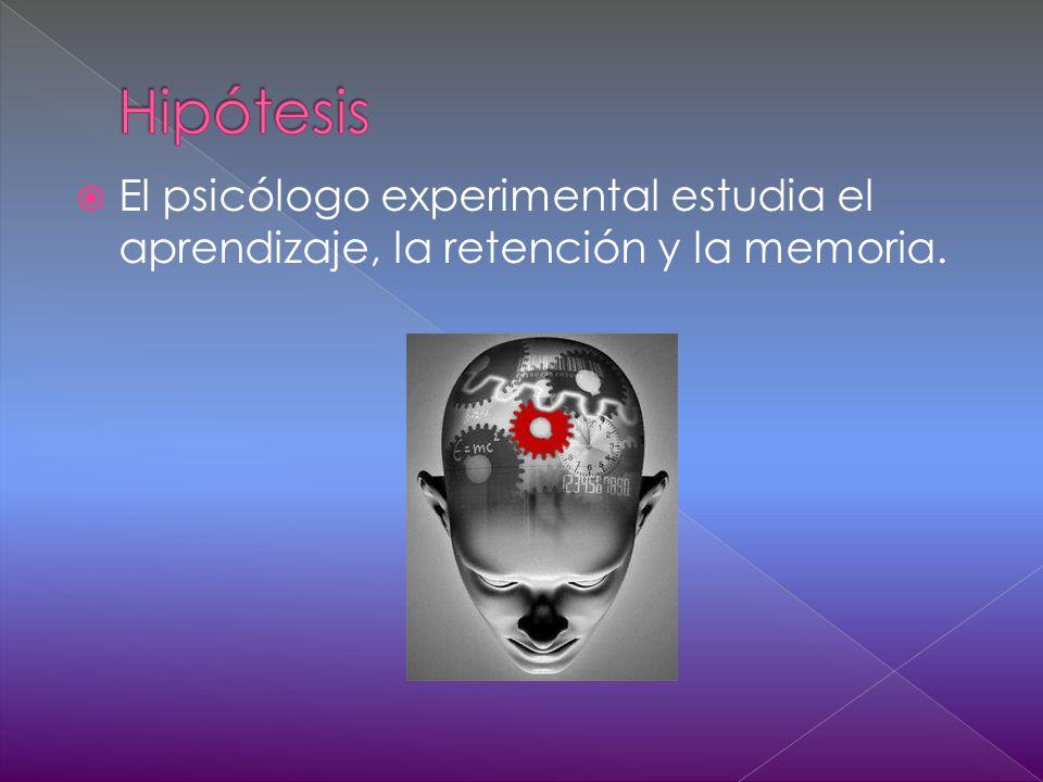El psicólogo experimental estudia el aprendizaje, la retención y la memoria.