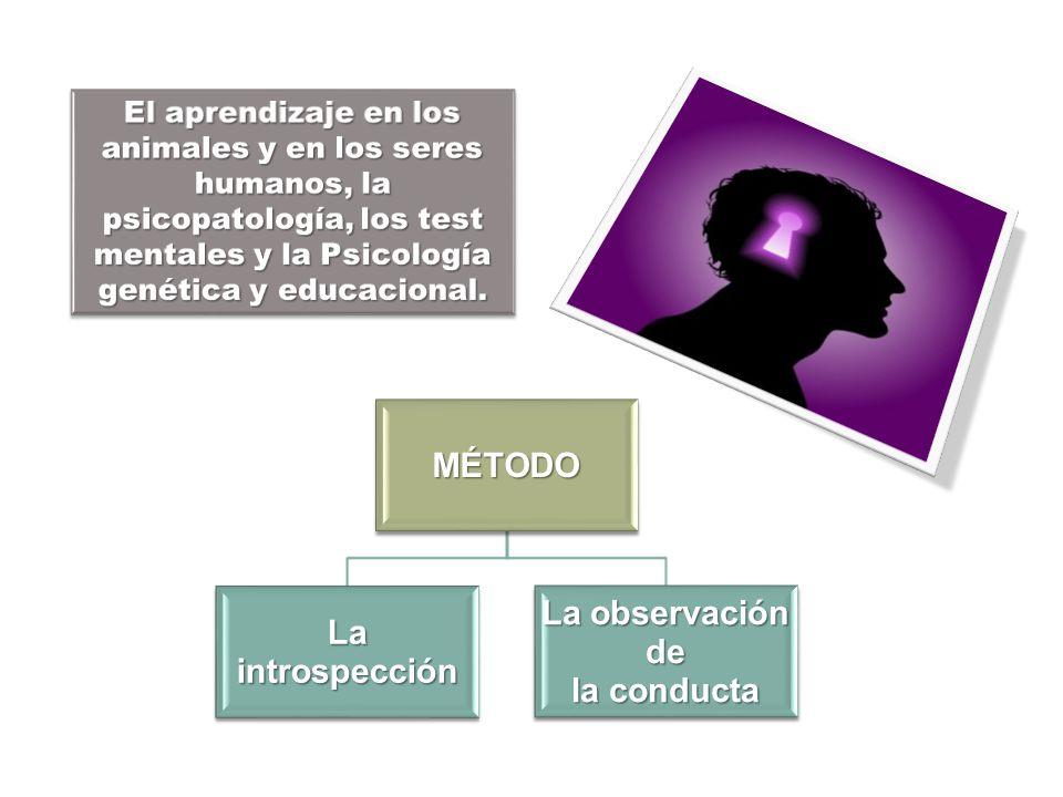 MÉTODO La introspección La observación de la conducta