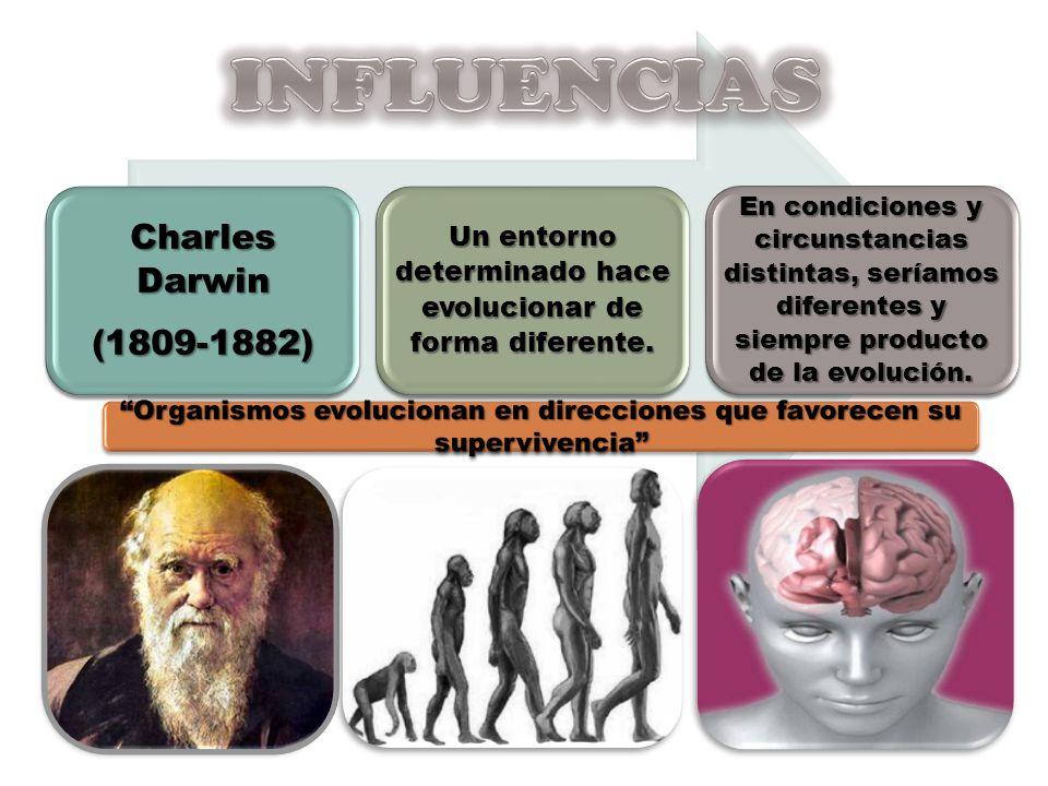 Charles Darwin (1809-1882) Un entorno determinado hace evolucionar de forma diferente. En condiciones y circunstancias distintas, seríamos diferentes