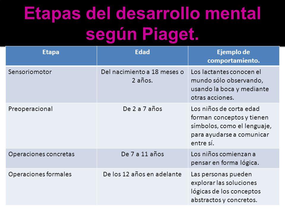 Etapas del desarrollo mental según Piaget. EtapaEdadEjemplo de comportamiento. SensoriomotorDel nacimiento a 18 meses o 2 años. Los lactantes conocen