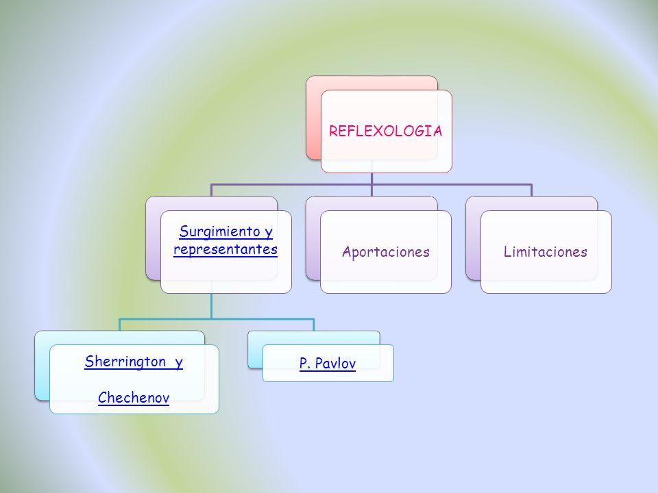 REFLEXOLOGIA Surgimiento y representantes Sherrington y Chechenov P. Pavlov AportacionesLimitaciones