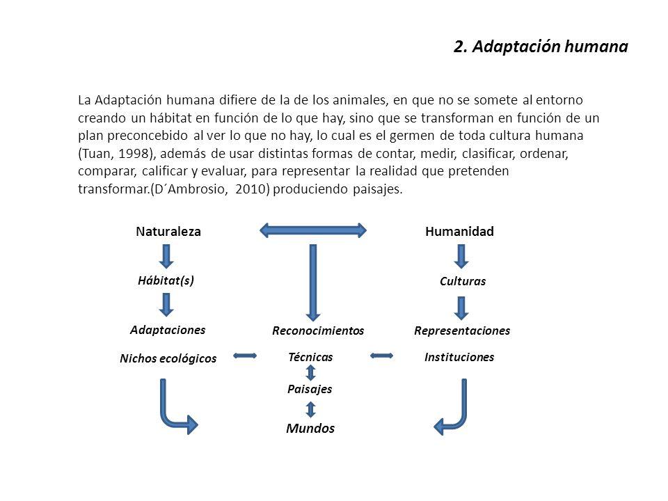 2. Adaptación humana La Adaptación humana difiere de la de los animales, en que no se somete al entorno creando un hábitat en función de lo que hay, s