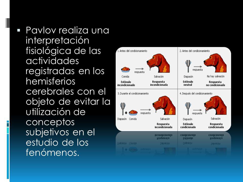 Pavlov realiza una interpretación fisiológica de las actividades registradas en los hemisferios cerebrales con el objeto de evitar la utilización de c
