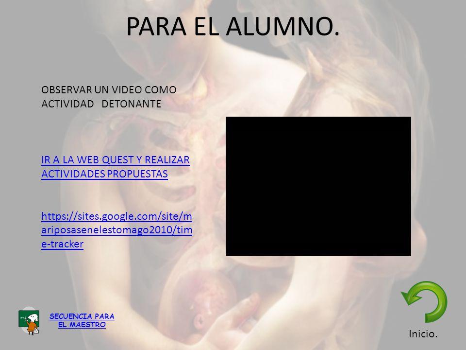 PARA EL ALUMNO. OBSERVAR UN VIDEO COMO ACTIVIDAD DETONANTE IR A LA WEB QUEST Y REALIZAR ACTIVIDADES PROPUESTAS https://sites.google.com/site/m ariposa