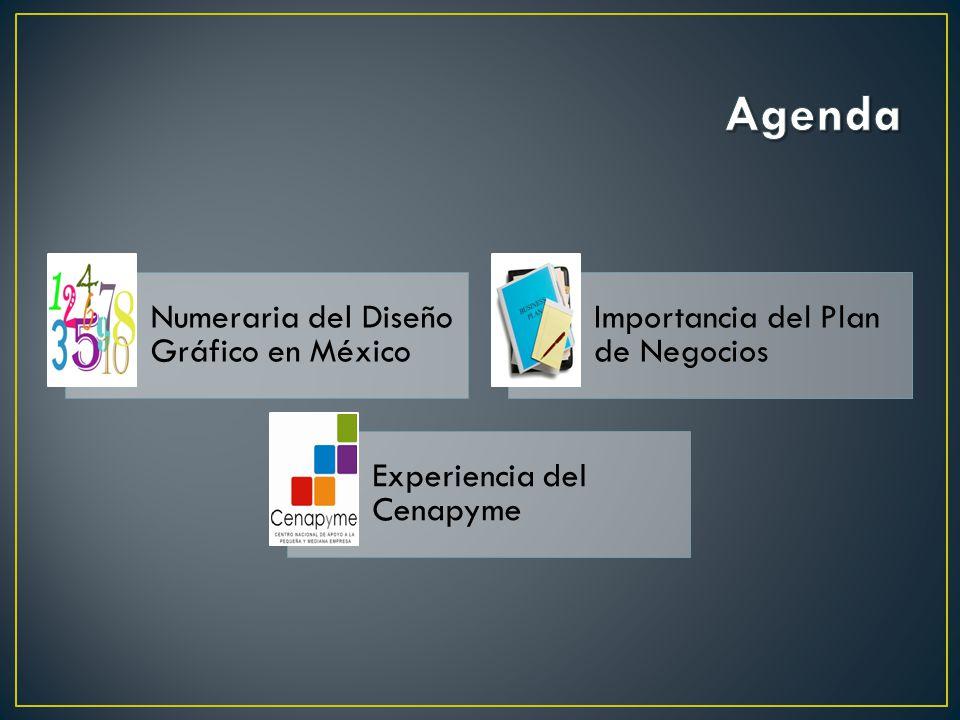 Numeraria del Diseño Gráfico en México Importancia del Plan de Negocios Experiencia del Cenapyme