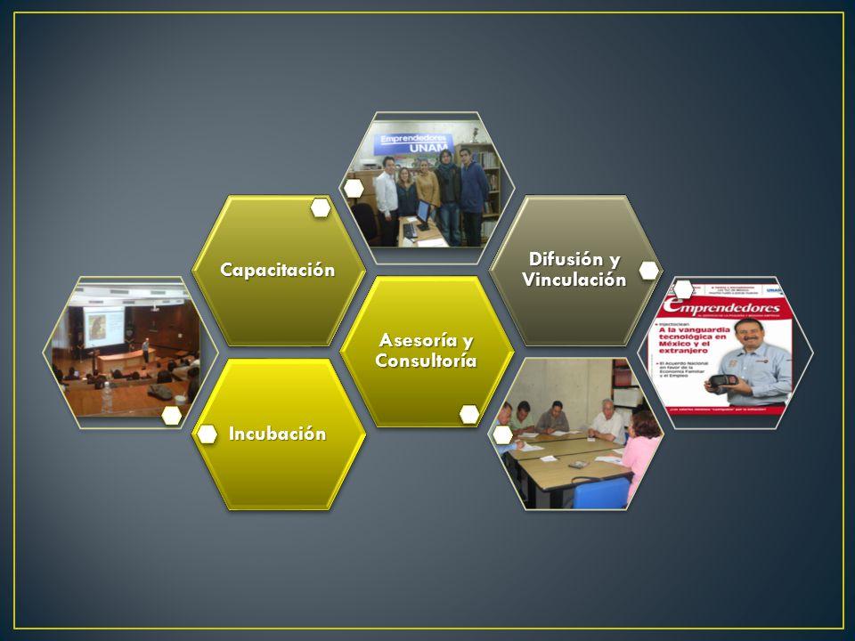 Incubación Asesoría y Consultoría Capacitación Difusión y Vinculación
