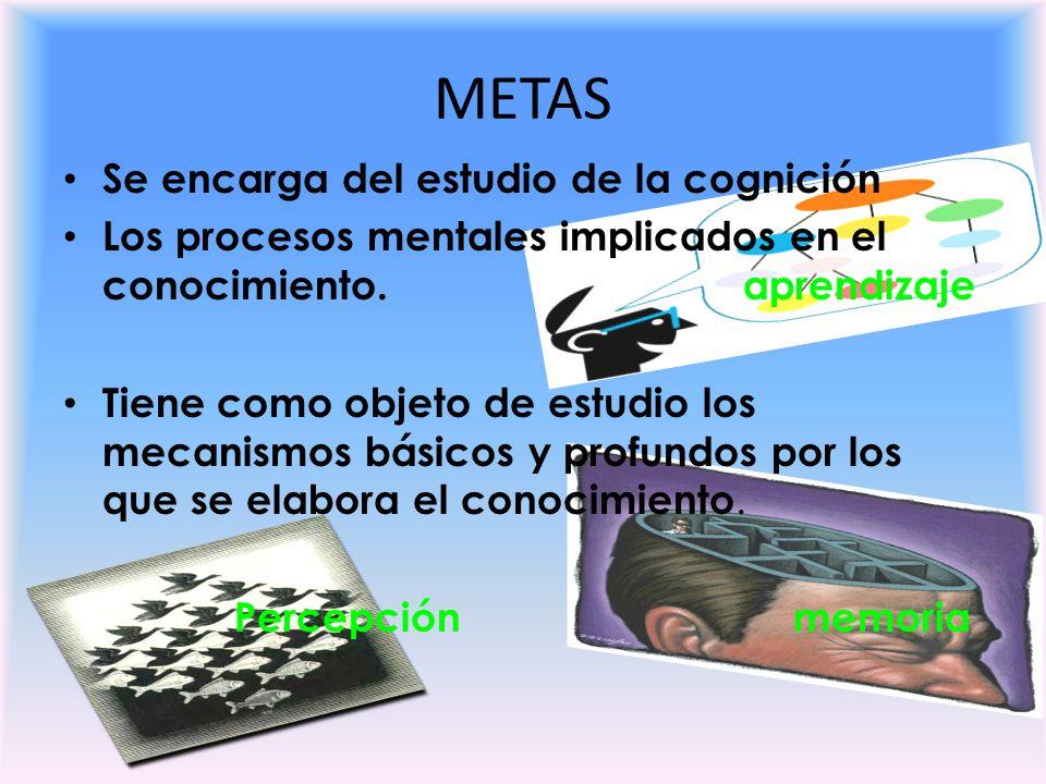 METAS Se encarga del estudio de la cognición Los procesos mentales implicados en el conocimiento. aprendizaje Tiene como objeto de estudio los mecanis