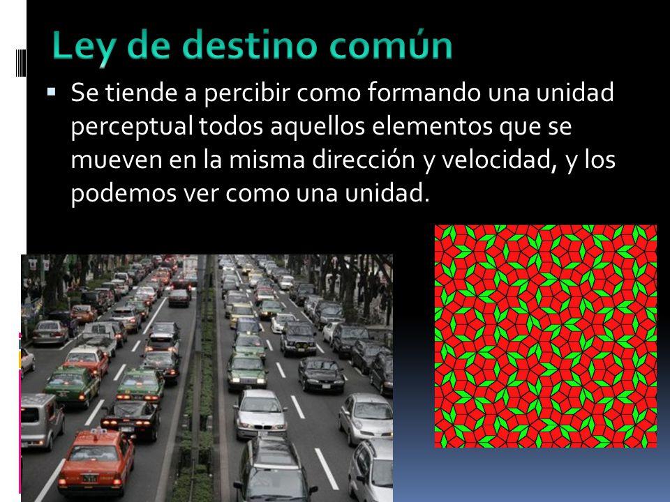 Se tiende a percibir como formando una unidad perceptual todos aquellos elementos que se mueven en la misma dirección y velocidad, y los podemos ver como una unidad.