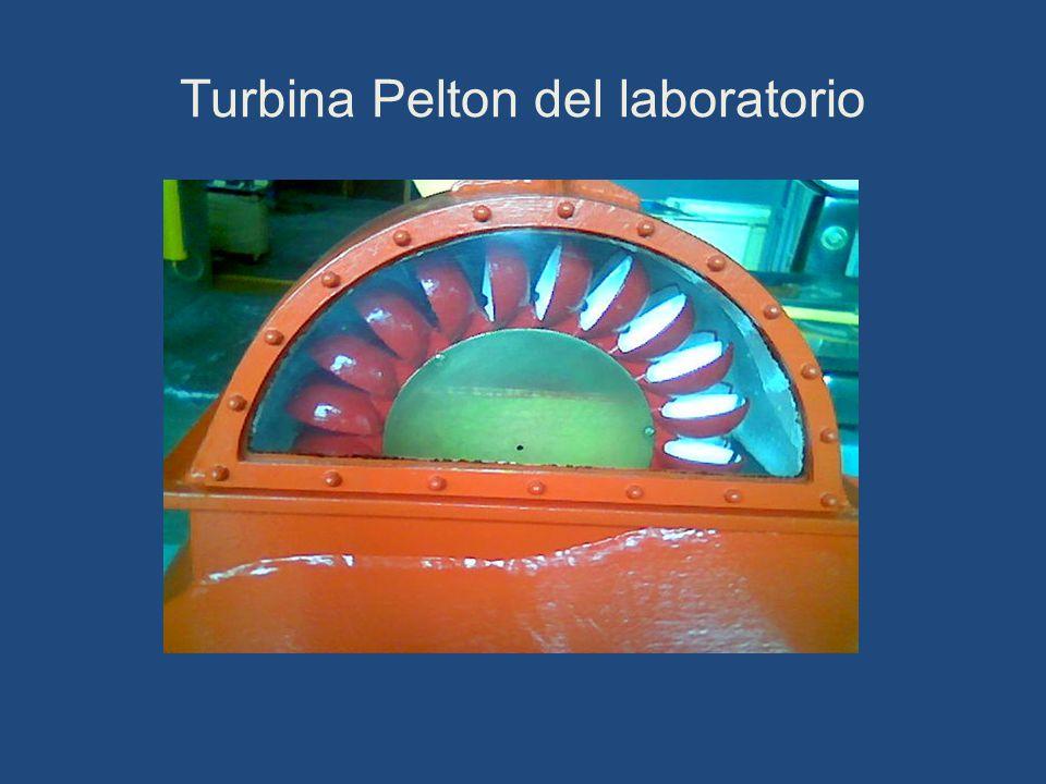 Turbina Pelton del laboratorio