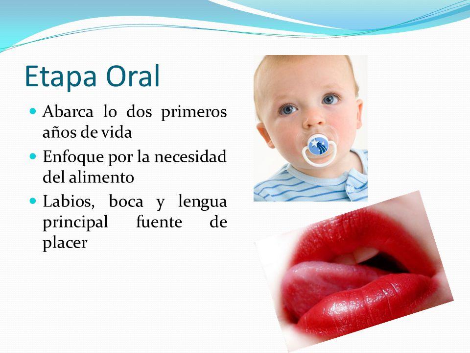 Etapa Oral Abarca lo dos primeros años de vida Enfoque por la necesidad del alimento Labios, boca y lengua principal fuente de placer