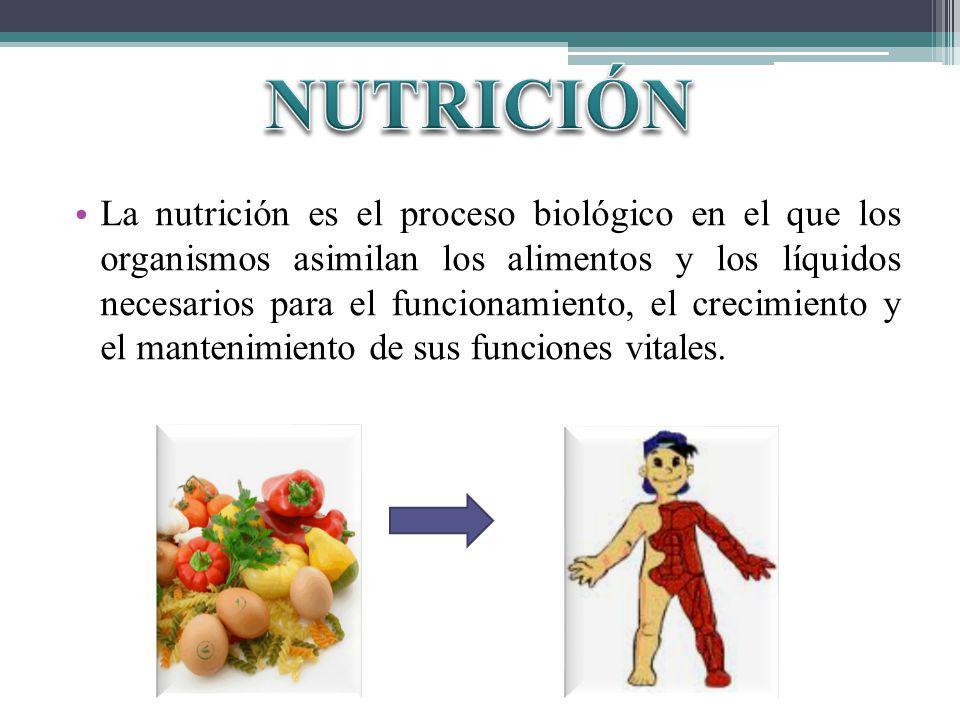 La nutrición es el proceso biológico en el que los organismos asimilan los alimentos y los líquidos necesarios para el funcionamiento, el crecimiento