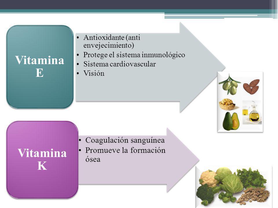 Antioxidante (anti envejecimiento) Protege el sistema inmunológico Sistema cardiovascular Visión Vitamina E Coagulación sanguínea Promueve la formació