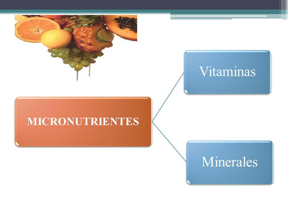 MICRONUTRIENTES VitaminasMinerales