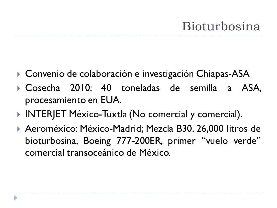 Bioturbosina Convenio de colaboración e investigación Chiapas-ASA Cosecha 2010: 40 toneladas de semilla a ASA, procesamiento en EUA. INTERJET México-T
