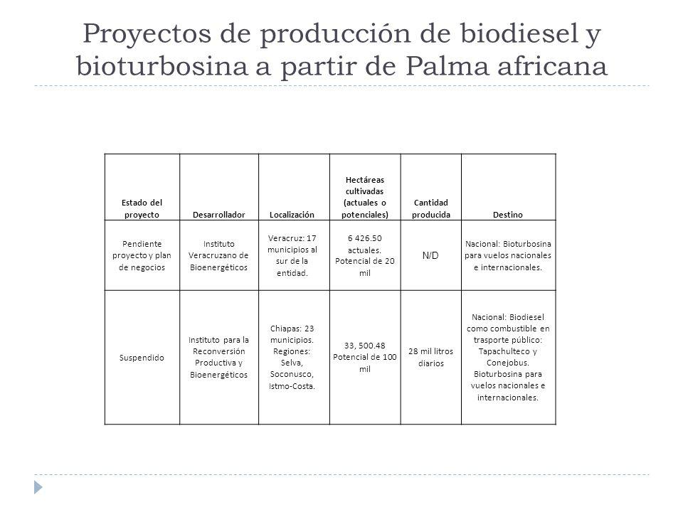 Proyectos de producción de biodiesel y bioturbosina a partir de Palma africana Estado del proyectoDesarrolladorLocalización Hectáreas cultivadas (actu