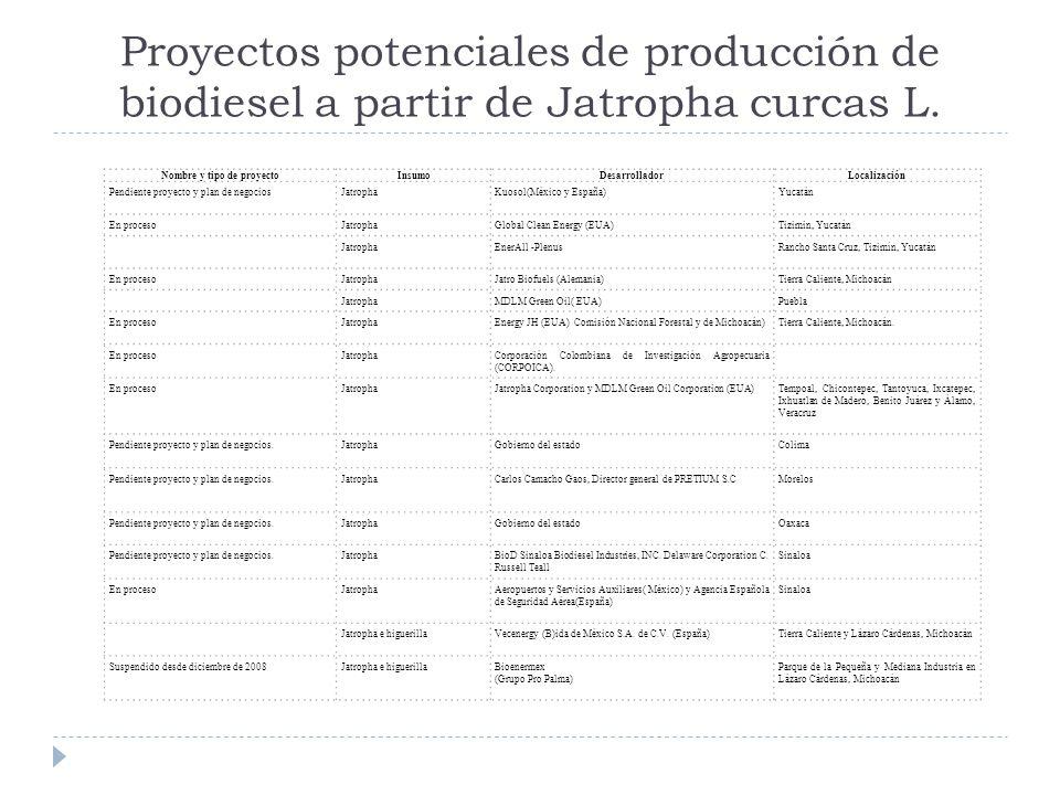 Proyectos potenciales de producción de biodiesel a partir de Jatropha curcas L. Nombre y tipo de proyectoInsumoDesarrolladorLocalización Pendiente pro