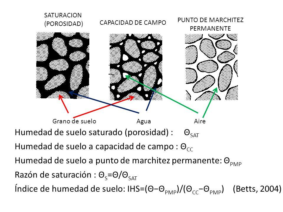 SATURACION (POROSIDAD) CAPACIDAD DE CAMPO PUNTO DE MARCHITEZ PERMANENTE Grano de suelo AguaAire Humedad de suelo saturado (porosidad) : Θ SAT Humedad